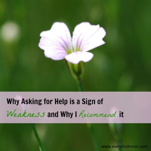 Why Asking for Help is a Sign of Weakness and Why I Recommend it