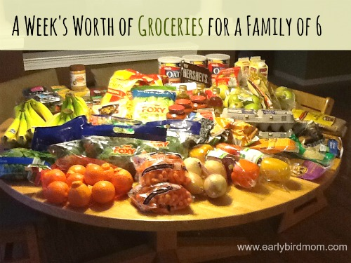 A week's worth of groceries for a family of 6