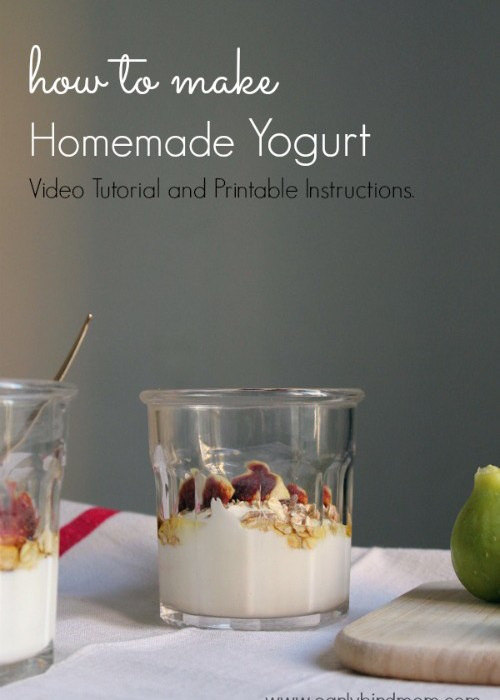 How to Make Homemade Yogurt: Video Tutorial and Printable Instructions.