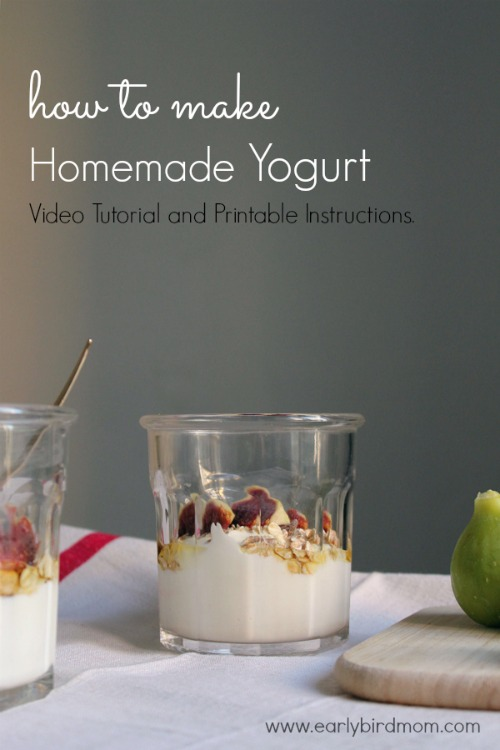 Homemade yogurt is so easy to make and so healthy for you. You'll save tons of money on your grocery bill if you start making your own yogurt. This video tutorial takes you through the process step-by-step. It's a foolproof method and no special equipment is required.