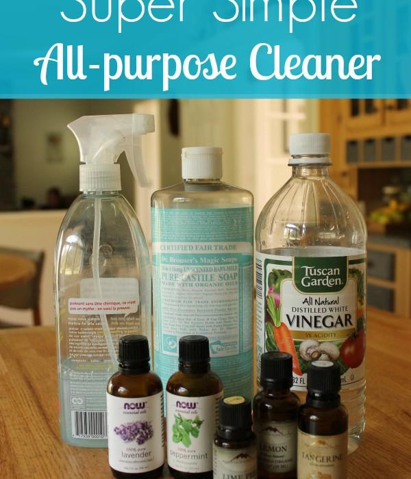 Super simple DIY all-purpose cleaner recipe