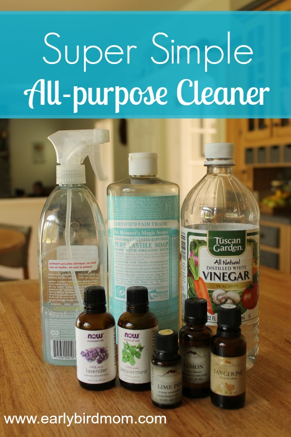 Super simple DIY all-purpose cleaner recipe