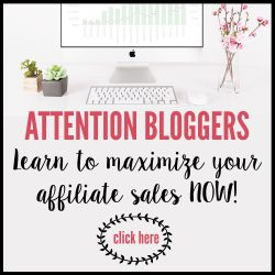 Affiliate-Marketing-for-Bloggers-250-x-250