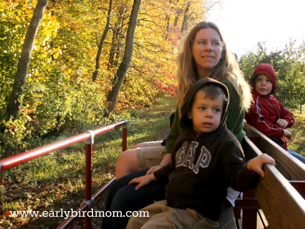 The wagon ride out to pick apples was a big hit with my 3 year old.