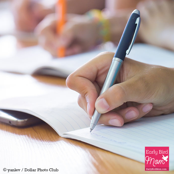 public school is better than homeschool essay Home-schooling is better than public schooling - a common misconception about homeschooled kids is that they miss out on a strong essays: home school.