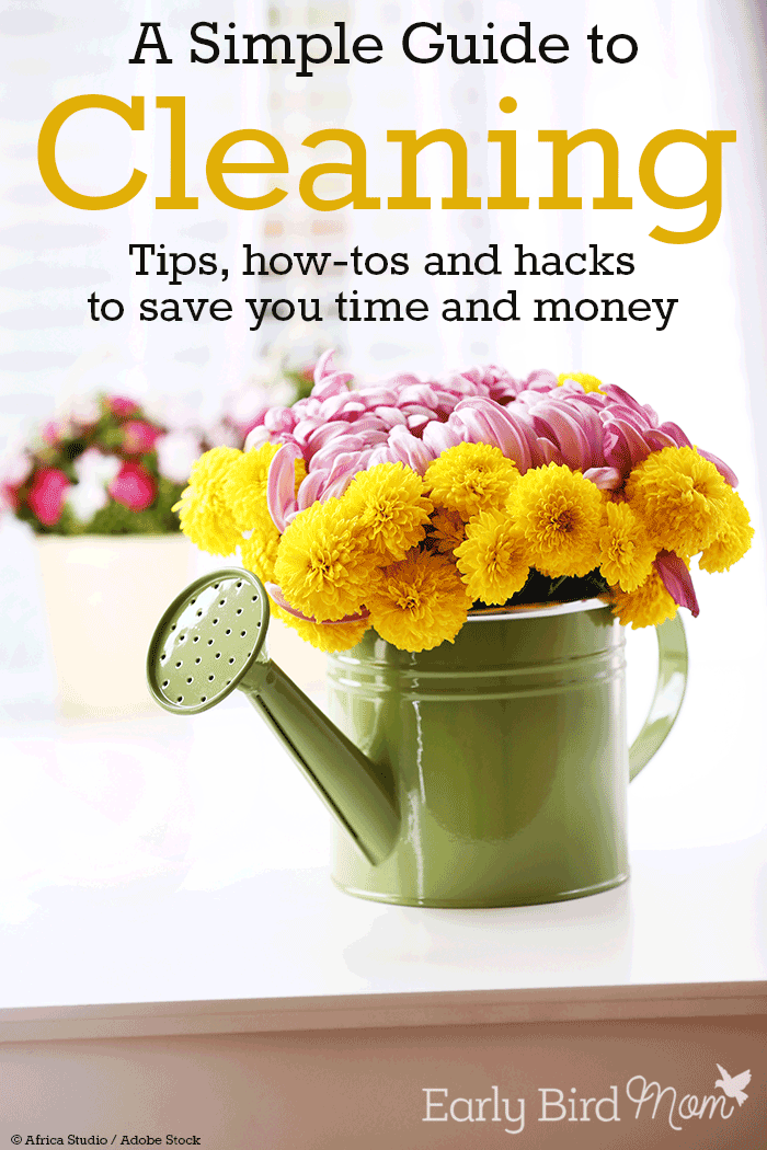 A Simple Guide To Cleaning Tips How Tos And Hacks To