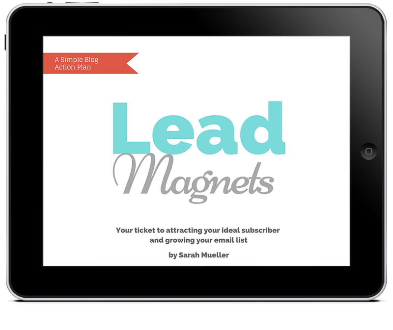 lead-magnet-action-plan