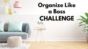OLAB challenge